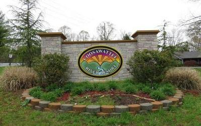 L695 RIVERVIEW DR, Ellijay, GA 30540 - Photo 2