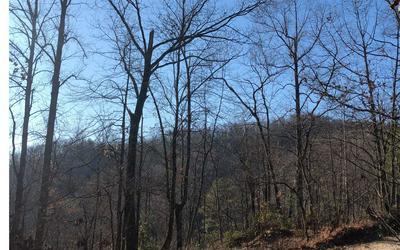 TBD TATHAM GAP RD, Andrews, NC 28901 - Photo 2