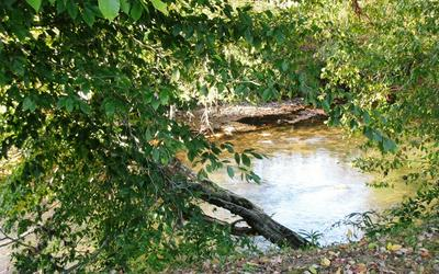 5 LOT LEAPING TROUT RUN, Marble, NC 28905 - Photo 2