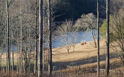 8 FAITH HL, McCaysville, GA 30555 - Photo 2
