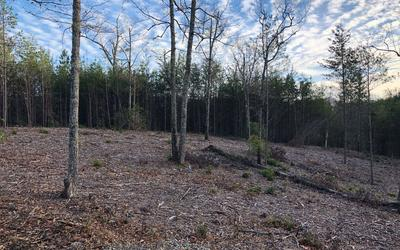 LOT51 DOUBLE SPRINGS, Blairsville, GA 30512 - Photo 1
