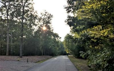 LT15 APPLE VALLEY, Blairsville, GA 30512 - Photo 2