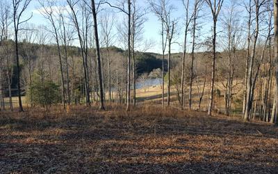 8 FAITH HL, McCaysville, GA 30555 - Photo 1