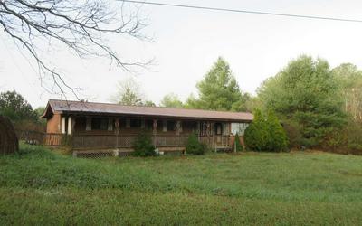 114 LACKEY DR, Copperhill, TN 37317 - Photo 1