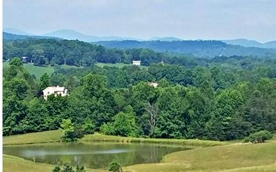 LOT10 BARNWOOD RD, Blairsville, GA 30514 - Photo 1