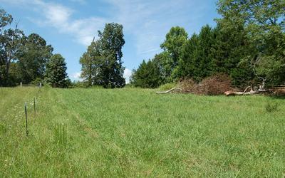 SUTTON FARM RD D/D1, Hiawassee, GA 30546 - Photo 2