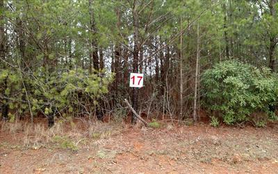 L-17 SKYLINE DR, DUCKTOWN, TN 37326 - Photo 1