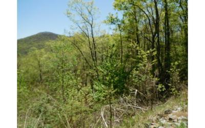 21 HIDDEN SPRINGS DR, Brasstown, NC 28902 - Photo 2