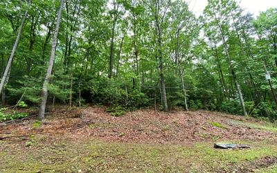 ROBERTS ROAD, Murphy, NC 28906 - Photo 2
