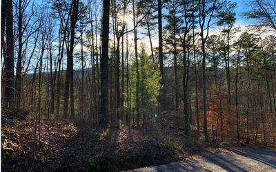1684 SHADE TREE, Ellijay, GA 30540 - Photo 2