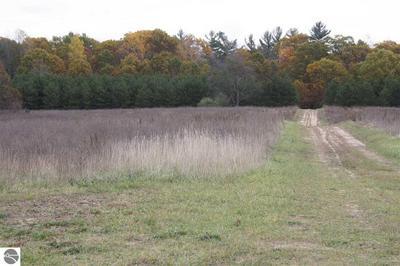 A TBD LITTLEFIELD ROAD, Blanchard, MI 49310 - Photo 1