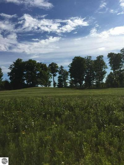 MOONEY WAY, Kewadin, MI 49648 - Photo 1