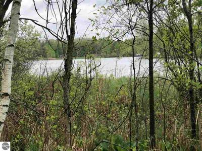 10787 NE DEANER LAKE DRIVE, Vestaburg, MI 48891 - Photo 1