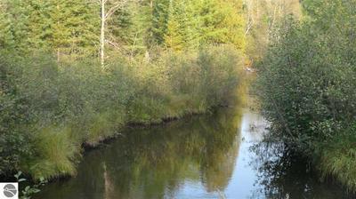 11814 LOW RD, Lovells, MI 49756 - Photo 2
