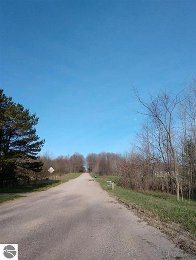 000 W COUNTY LINE ROAD, Buckley, MI 49620 - Photo 2