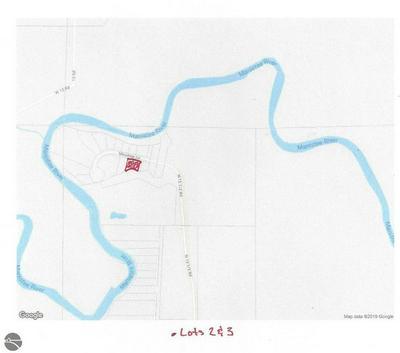 LOT 3 MEADOW LANE, Mesick, MI 49668 - Photo 1