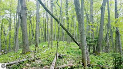 LOT 13 STRATTON LANE, Elberta, MI 49628 - Photo 2