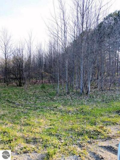 000 W COUNTY LINE ROAD, Buckley, MI 49620 - Photo 1
