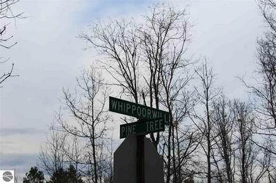 00 TIMBER LANE, Glennie, MI 48737 - Photo 1