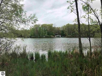 10787 NE DEANER LAKE DRIVE, Vestaburg, MI 48891 - Photo 2