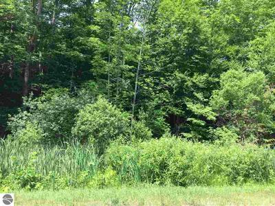 5900 E LINCOLN RD, Cedar, MI 49621 - Photo 1
