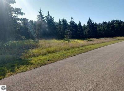LOT 13 LIPP FARM ROAD, Benzonia, MI 49616 - Photo 1