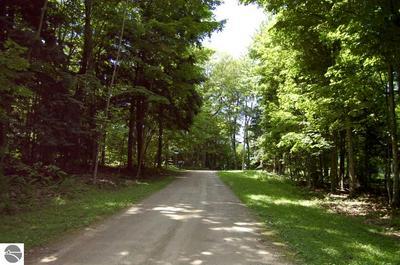 0 WILDWOOD LANE, Kewadin, MI 49627 - Photo 1