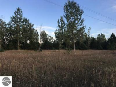 VL 13 MILE ROAD, Copemish, MI 49625 - Photo 2