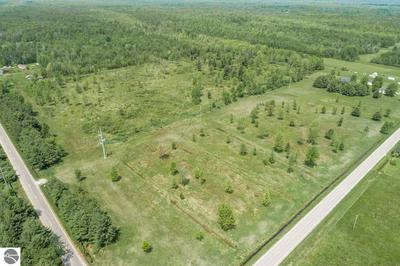 38 ACRES N COLEMAN ROAD, Coleman, MI 48618 - Photo 1