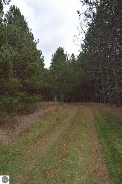 0 KNEPP ROAD, Fairview, MI 48621 - Photo 2