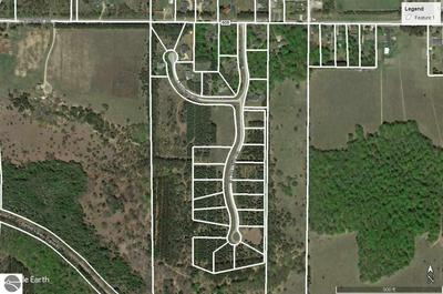 LOT 11 LIPP FARM ROAD, Benzonia, MI 49616 - Photo 2
