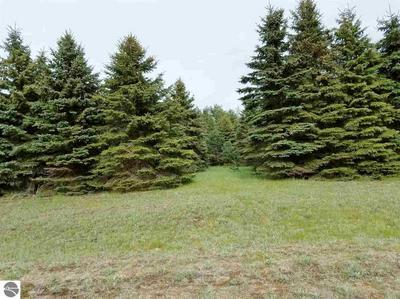 LOT 16 LIPP FARM ROAD, Benzonia, MI 49616 - Photo 1