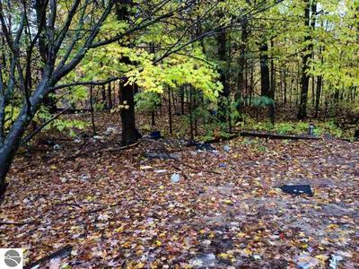3587 S US 31, Kewadin, MI 49648 - Photo 1