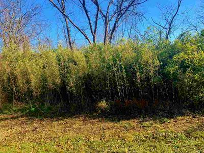 16059A PFANSTIEL RD, Demossville, KY 41033 - Photo 2
