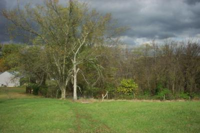 7.4 ACRES EADS ROAD, Crittenden, KY 41030 - Photo 2