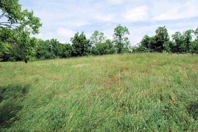 3.94 ACRES GILLISPIE ROAD, Falmouth, KY 41040 - Photo 2
