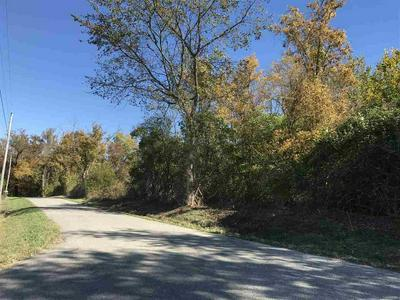 0 LAWRENCEBURG FERRY ROAD, PETERSBURG, KY 41080 - Photo 2