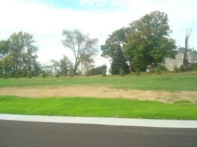LIZA LANE LOT 49, Crittenden, KY 41030 - Photo 1