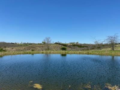 338 TOADVINE RD, Brooksville, KY 41004 - Photo 2