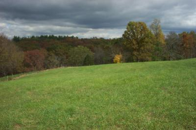 7.4 ACRES EADS ROAD, Crittenden, KY 41030 - Photo 1