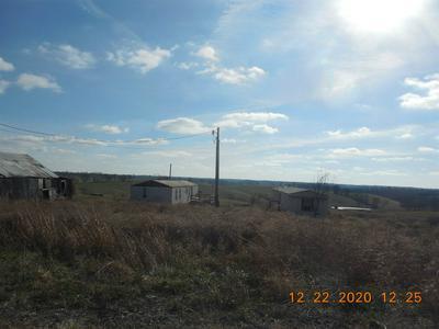 100 HWY 465, Sparta, KY 41086 - Photo 2