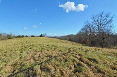 5.5+/- ACRES KY HWY 27 LOT #3, Falmouth, KY 41040 - Photo 1