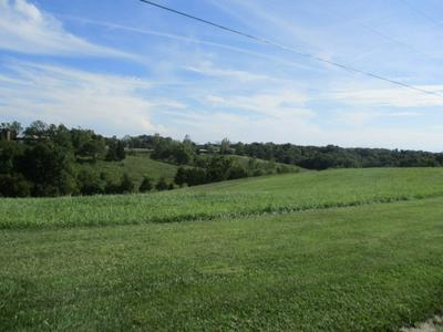 1.77 ACRES ETHEL DRIVE, Foster, KY 41043 - Photo 2