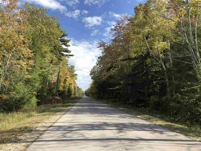 #27 BIRCHVIEW DRIVE, Kewadin, MI 49648 - Photo 1