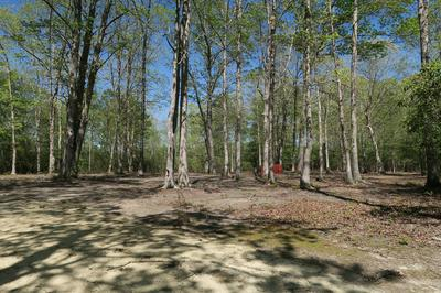 4.79AC OLD SALEM ROAD, Irvington, VA 22480 - Photo 2