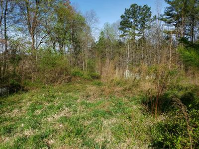 00 HALES POINT ROAD, Farnham, VA 22460 - Photo 2