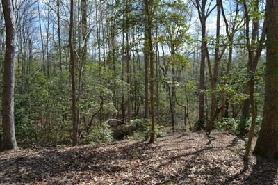0 SETTLERS LANDING ROAD, Warsaw, VA 22572 - Photo 2