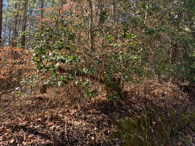 002 VESSELS ROAD, Newtown, VA 23126 - Photo 1