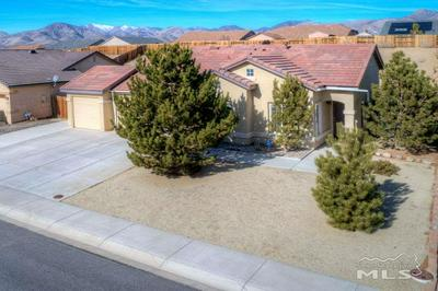 1390 GRASSLAND RD, DAYTON, NV 89403 - Photo 1