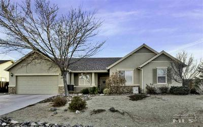 109 CREEKSIDE DR, DAYTON, NV 89403 - Photo 1